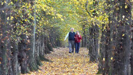 пожилая пара прогулка осень лес