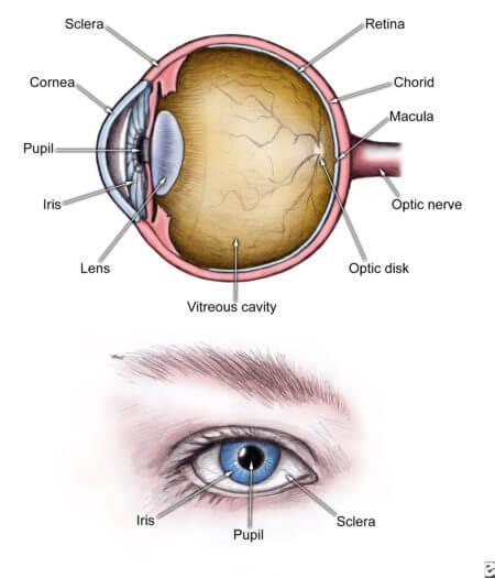 глаз больной паталогия глаукома