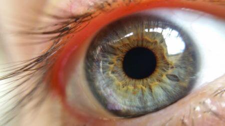 Зрачек глаза