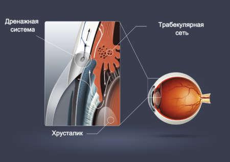 Трабекулярная сеть дренажная система глаза