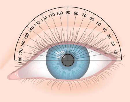 глаз с полями зрения