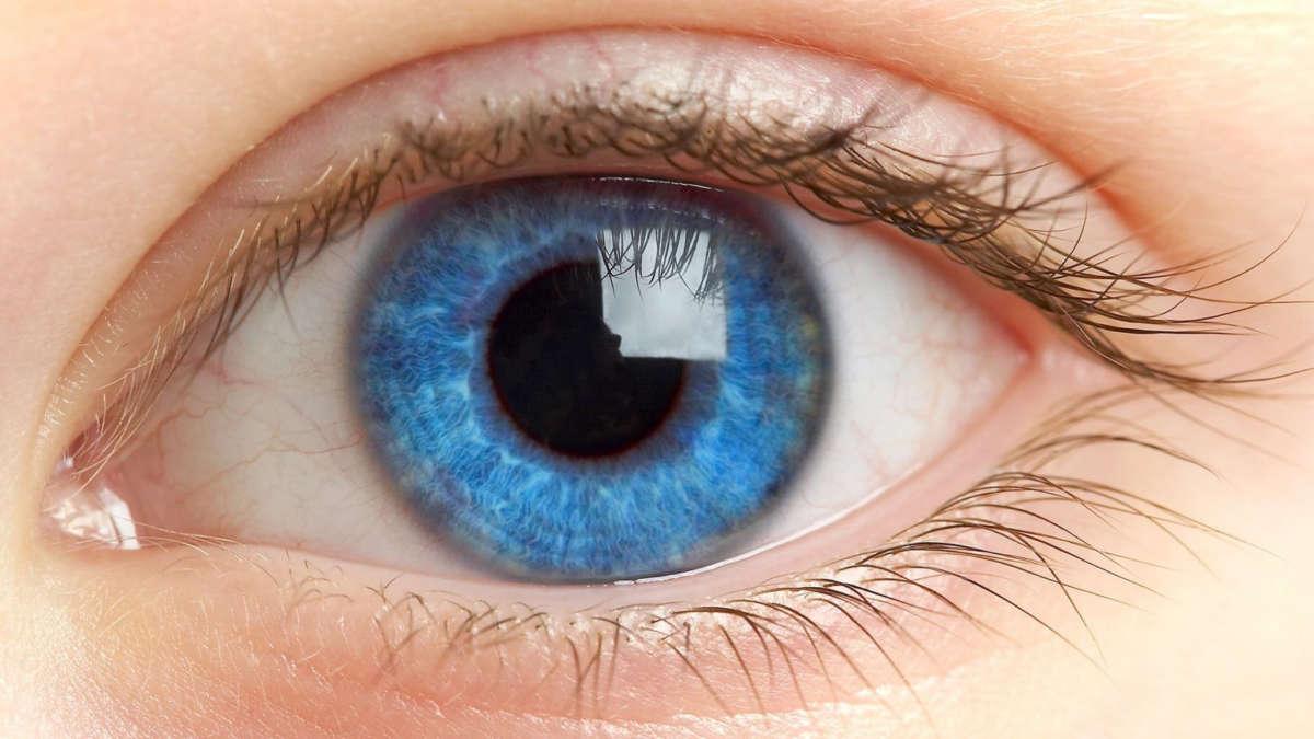Застывший ячмень на глазу фото — Болезни глаз