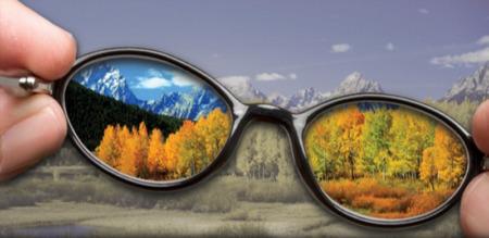 мир через очки для дальтоника