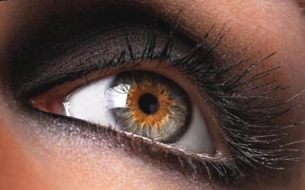 Ангиопатия сетчатки глаза: у взрослых и ребенка - что это такое?