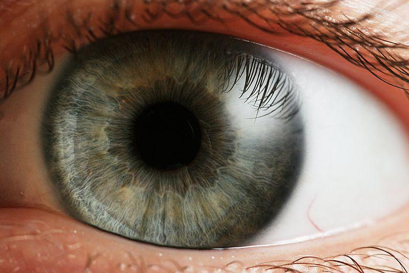 Хориоретинальная дистрофия сетчатки глаза